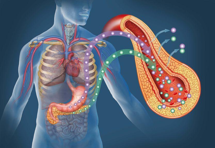 Complicaciones crónicas más habituales de la diabetes