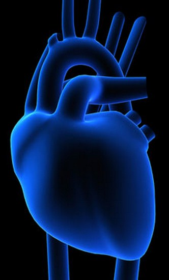 Vivir tras un trasplante cardiaco