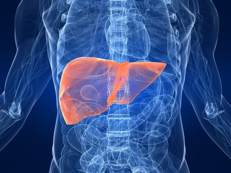 Nuevos tratamientos para la cirrosis hepática