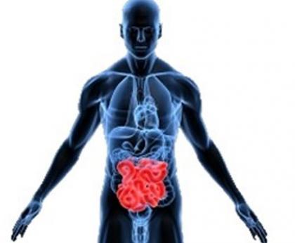Cáncer de colon, el futuro una personalización del tratamiento