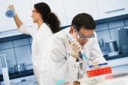 Hematología, líneas de investigación