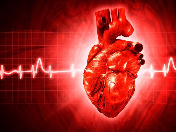 Infartos cardiacos, cómo prevenirlos, Enfermedades y su tratamiento