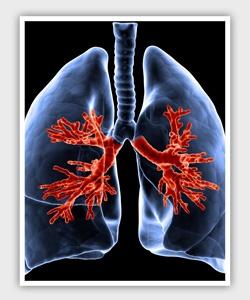 Trasplante de pulmón, cuando está indicado