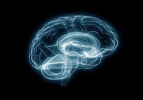 Neurorehabilitación y las nuevas tecnologías