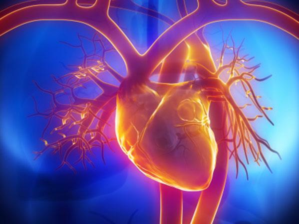 Se implanta un ventrículo artificial como puente al trasplante cardíaco