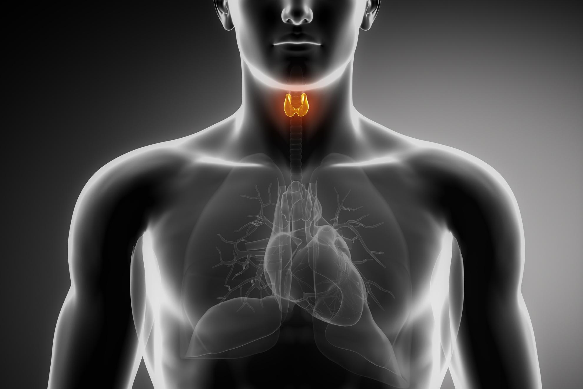 Cáncer de laringe, cirugía endoscópica, Enfermedades y su tratamiento