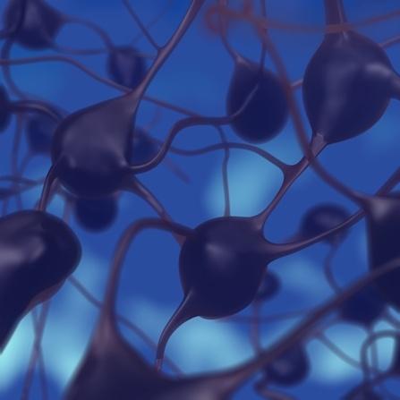 Parkinson y terapias complementarias, Enfermedades y su tratamiento