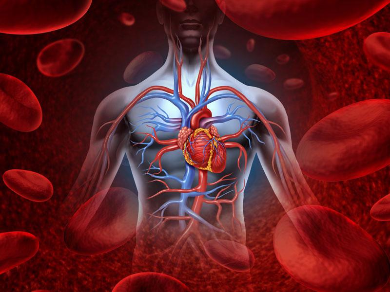 Qué hacer ante un aneurisma de aorta, Enfermedades y su tratamiento